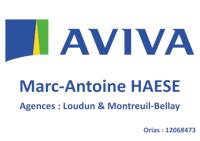 A4-AVIVA-2019-01